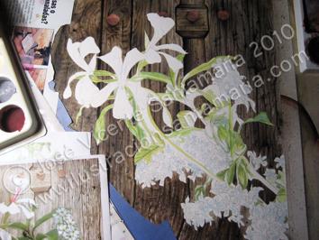 Puerta 01 Manchado de las flores 2010 © José Vicente Santamaría – Valencia - Spain